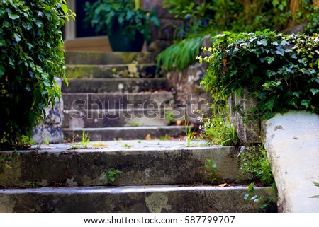 Old Stone Steps In A Garden. Sandstone Staircase Among Vegetation In A Lush  Park.