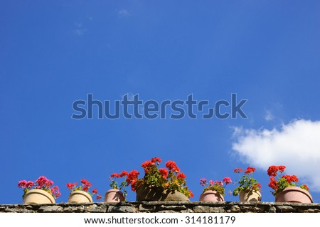 Old stone wall decorated with geranium flowers in pots. Sunny day. - stock photo
