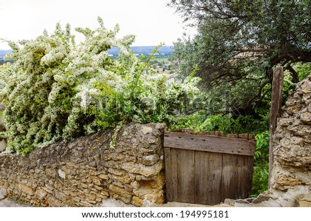 Old stone wall overgrown with blooming tree and wooden door  to the homestead garden. A view on the valley at backgrounds. Rural background. (Chateauneuf du Pape, Provence, France)  - stock photo