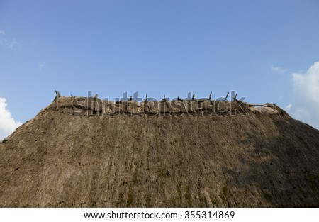Old straw-thatched roof. Old traditional Ukrainian architecture. - stock photo