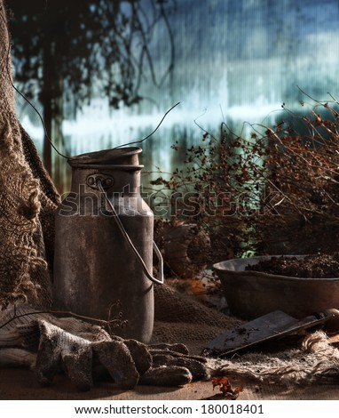 Old stuff in hothouse - stock photo