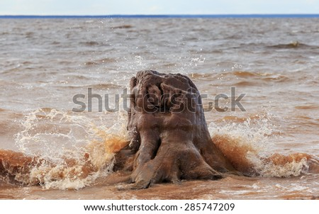 Old stump in waves on shore of big river