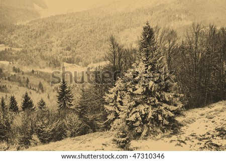 old style photo of winter scene - stock photo