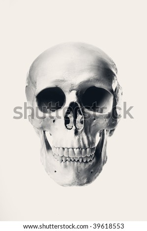 Old style portrait of a human skull with high contrast on slightly sepia background - stock photo