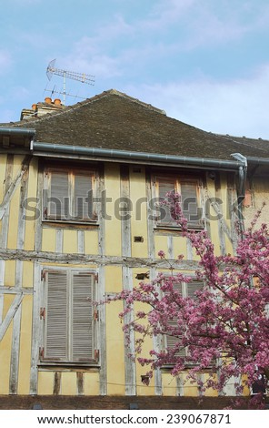 Old tenement and flowering almond tree in Troyes, France  - stock photo