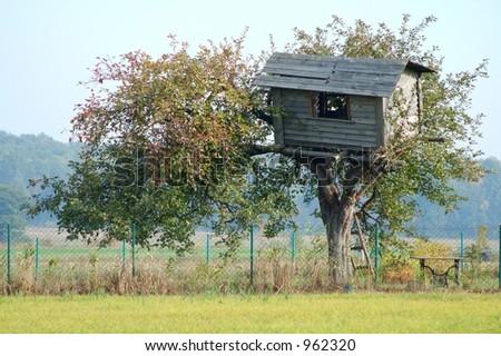 Old tree house - stock photo