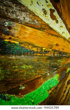 Old tree of different colors - stock photo