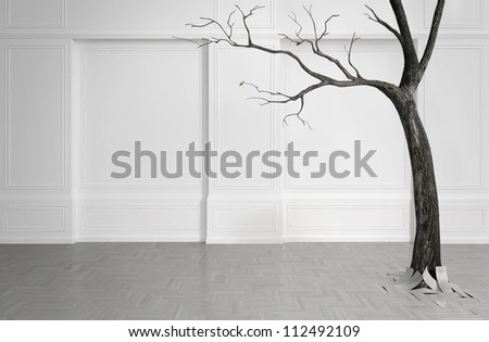 Old tree with falling leaves in a white room. With one remaining green leaf. - stock photo