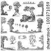 Old trees set illustration - stock photo