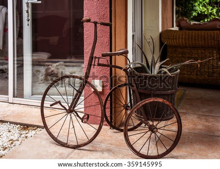 Old tricycle in the garden - stock photo