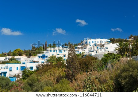 Old Tunisian town Sidi Bou Said is today a luxury quarter of the capital Tunis. Sidi Bou Said is known for blue and white colors. Many famous films were taken here. - stock photo