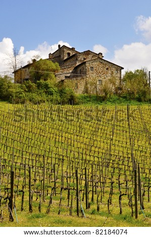 Old Tuscan house and vineyard in spring, Italy - stock photo