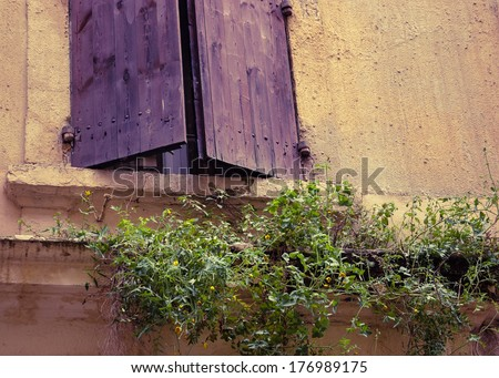 Overgrown Weeds Stock Photos Images Pictures Shutterstock