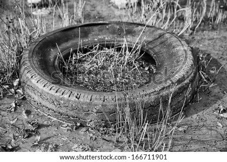 Old Tyre - stock photo