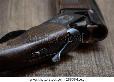 Old ?unting rifle - stock photo
