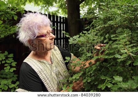 old urban woman taking care of a garden