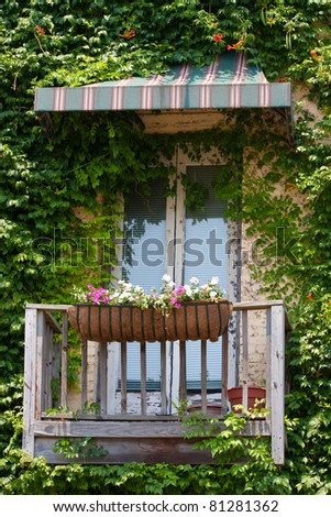 Old vintage window with awning and plant growth