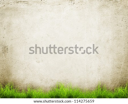 Old wall and green grass background - stock photo