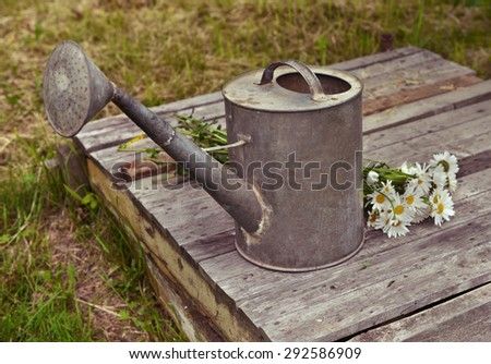 Old watering can with bunch of daisy flowers on wooden planks, retro still life - stock photo