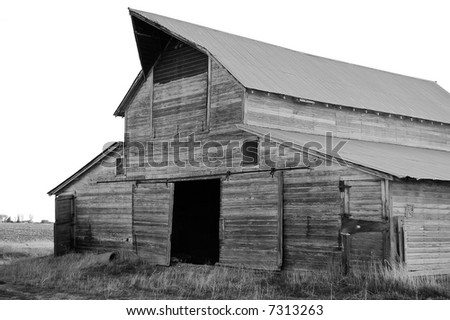 Old Weathered Abandoned Barn in Potato Field - stock photo
