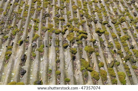 Old, weathered asbestos roof - recaptured by nature - stock photo