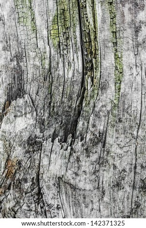 Old Weathered Cracked Wooden Cross-tie Surface Texture - stock photo