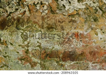 Old weathered medieval limestone stonewall green moss and lichen  - stock photo