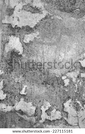 Old weathered wall texture in black and white color - stock photo