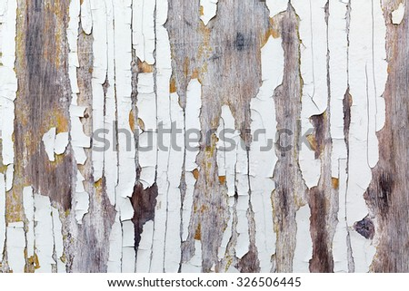 Old weathered wood texture with peeling white paint. Grunge background. - stock photo