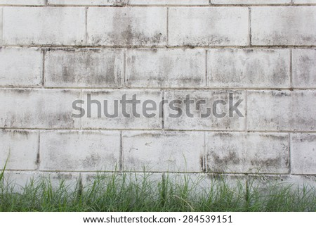 Old white wall with green background - stock photo