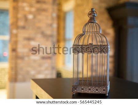 Logically Cockatiel sitting at bottom of cage commit error