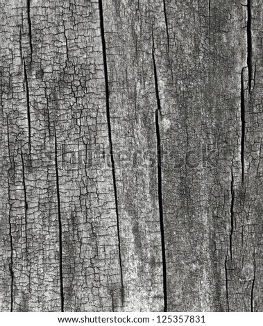 Old wood. Background. Texture. - stock photo