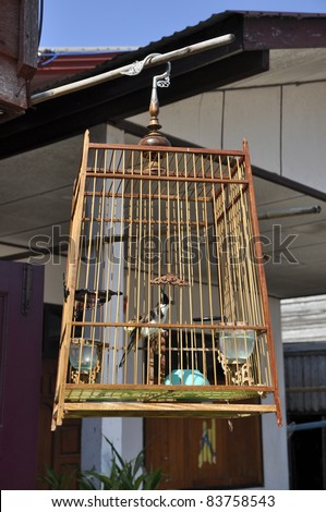 Old Wood Birdcage Hang Day - stock photo