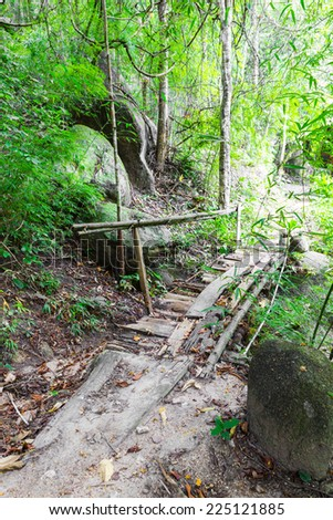 Old wood bridge in forest - stock photo