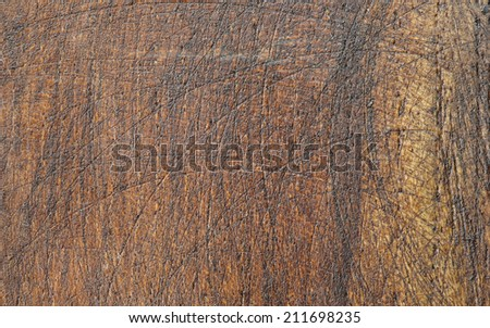Old Wood close up textured Background
