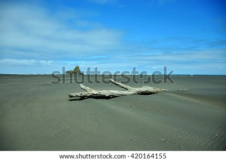 old wood lies on a beach