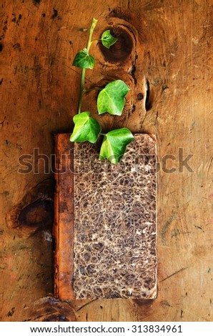 Old wood table with book and plant sprout in rustic vintage style. Top view. Retro concept background. For poster and design element. - stock photo
