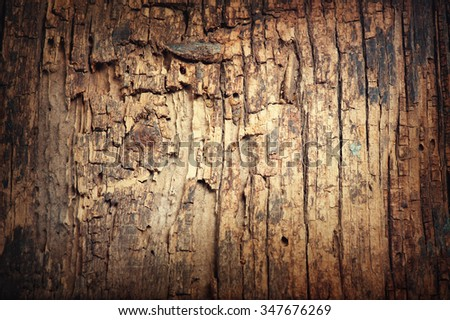 Old wood texture closeup. Damaged Wood close up. Wooden background - stock photo