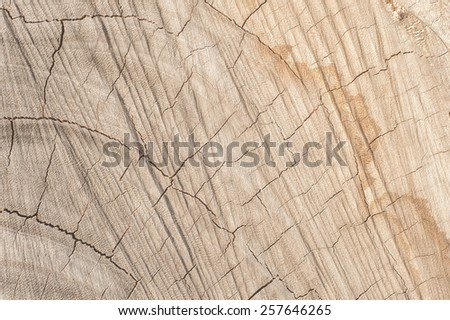 Old Wood Texture for Background - stock photo