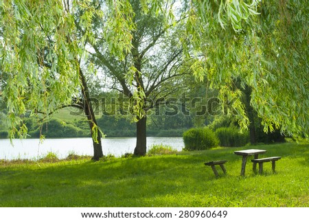 old wood trunk table and benches on river bank, focus on weeping willow lush on foreground