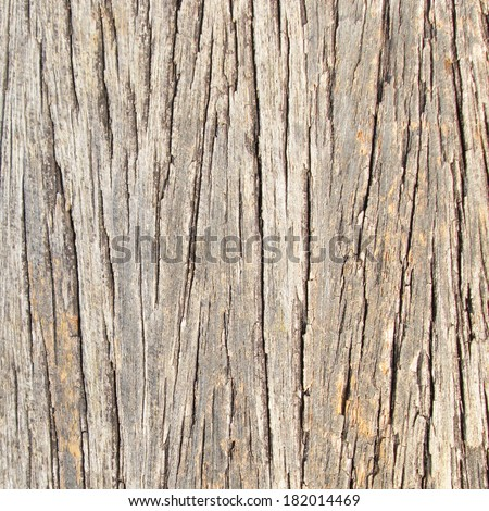 Old wood with cracks - stock photo