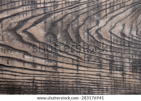 Old wooden background, the texture of ash - stock photo
