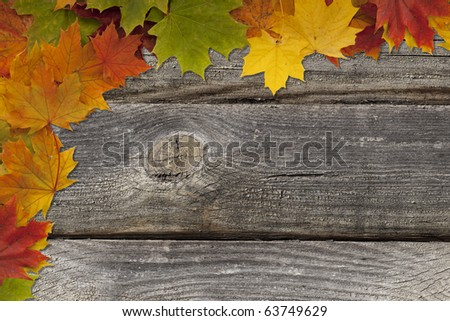 Old wooden background with maple leaf frame. - stock photo