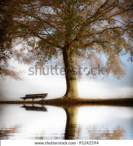 Old wooden bench in autumn park - stock photo