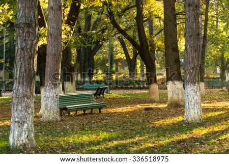 Old wooden bench with no people in the bright autumnal park - stock photo