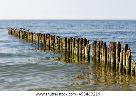 Old wooden breakwater built of thick logs driven into deep in the bottom of the sea, where they can see the destructive action of sea waves and salt water by the Baltic Sea in Kolobrzeg - stock photo