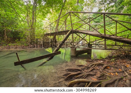 Old wooden bridge in a forest - stock photo