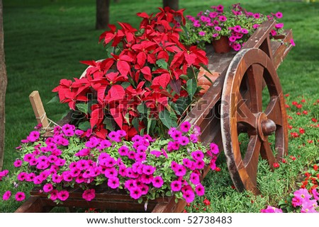 Old wooden cart full of colorful flowers - stock photo