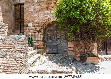 old wooden door with a big green bush