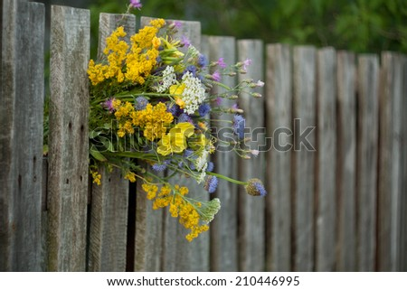 Old wooden fence with flowers. White Gate with Yellow, Pink and purple flowers  - stock photo